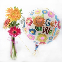 Gerbera Bud Vase and Balloon